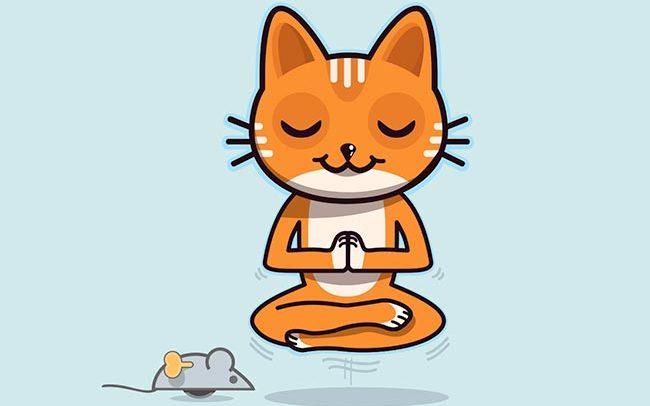 logo et mascotte d'un chat zen