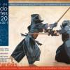 Affiche stage Kendo 2011