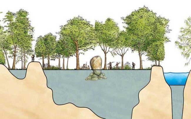 Portfolio coupe géologique et pédagogique avec arbre et homme